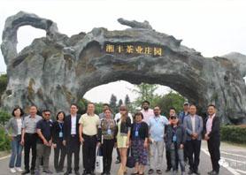 聚焦乡村振兴,一带一路媒体考察湘丰茶业集团