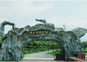 湘丰茶业获评湖南农业优势特色产业30强企业