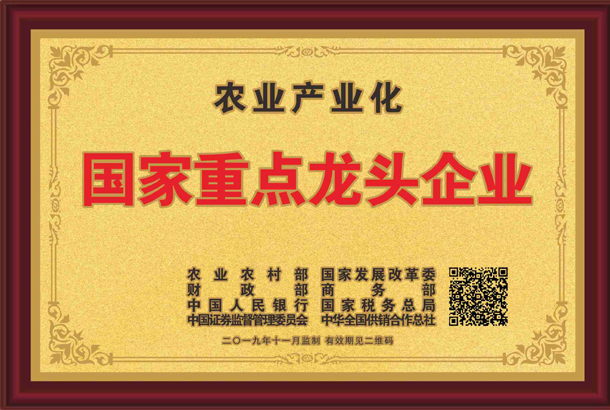 殊荣加身!湘丰茶业集团再获标杆龙头企业和优势特色产业30强等称号